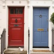 annaherold-ovet2