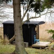 dw-sauna2